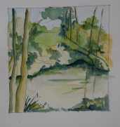 The pond - Pen and wash